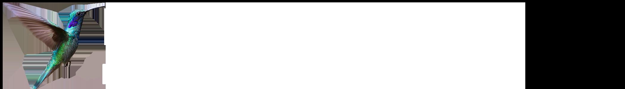KatieKalin